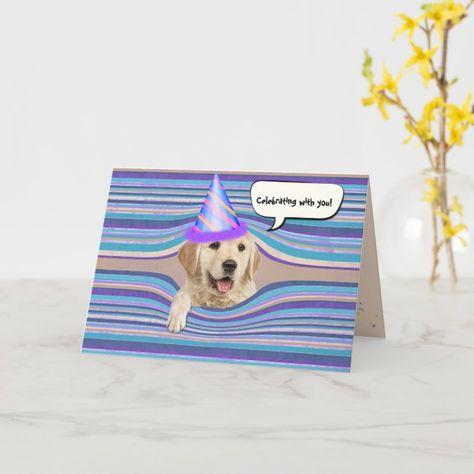 Golden retriever birthday humor card