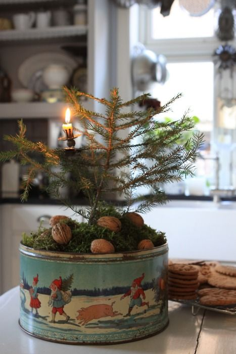 Vintage cookie tin with live tree.  I would not make it quite so rustic looking in my old Christmas tin.