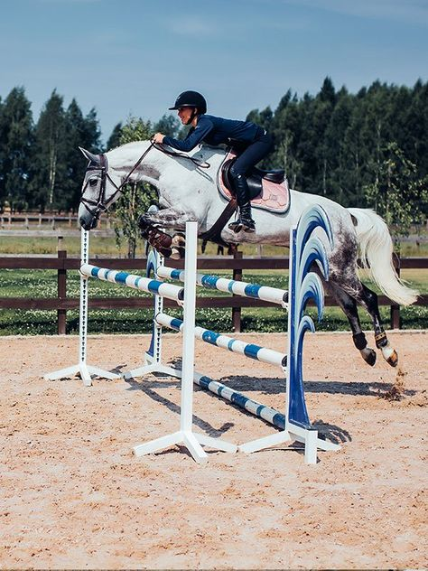 Cute Horses, Pretty Horses, Beautiful Horses, Harley Queen, Show Jumping Horses, Dressage Saddle, Equestrian Problems, Equestrian Outfits, Saddle Pads