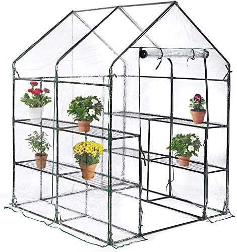 Beautiful Bestmassage Portable Mini Greenhouse Indoor Outdoor Plant Shelves Tomato Canopy Walk In Garden In 2020 Mini Greenhouse Indoor Mini Greenhouse Home Greenhouse