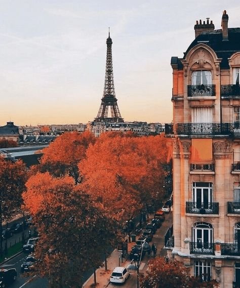 New travel pictures ideas paris france ideas Oh The Places You'll Go, Places To Travel, Places To Visit, Travel Destinations, Holiday Destinations, Holiday Places, Little Paris, Paris Ville, Travel Aesthetic