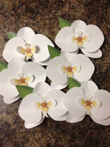 paper orchid diy art inspiration pinterest diy paper
