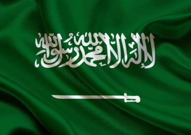 علم السعودية 2018 صور العلم السعودي عالم الصور Saudi Flag Neon Signs Google Images
