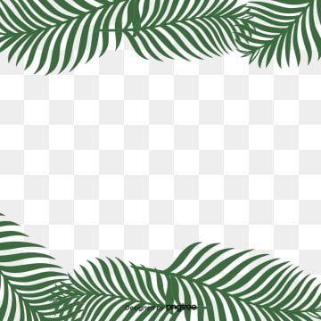 Simple Fresh Tropical Palm Leaf Border Originality Leaf Palm Leaf Border Png Transparent Clipart Image And Psd File For Free Download Leaf Collage Leaf Clipart Tropical Plants