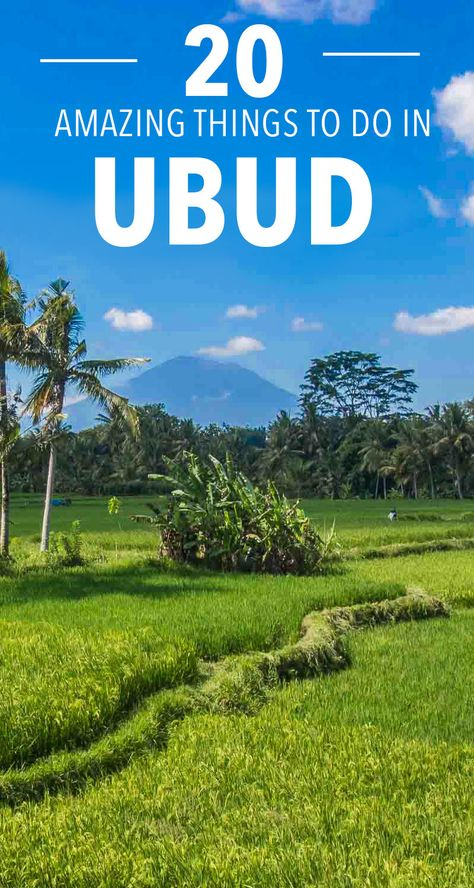 You might know the name from Eat, Pray, Love, but there's a lot more to Ubud, Bali than yoga! Here are 20 incredible things to do in Ubud while you visit. #thingstodoinubud #ubudbali #balitravel