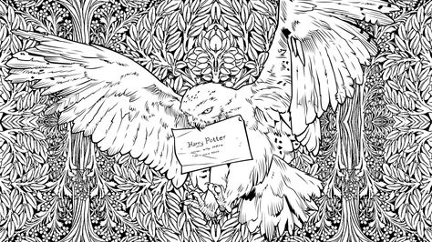 Colouring Book Inside Page Hedwig Coloriage Harry Potter