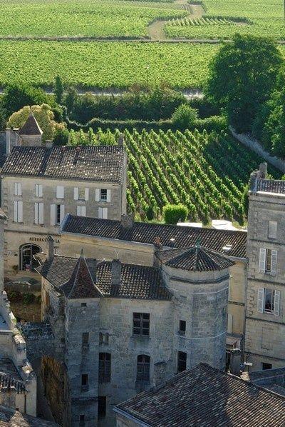 Saint-Emilion, vineyards and castle, south-west,
