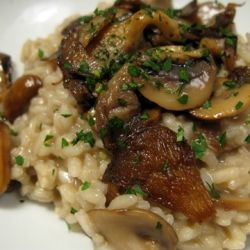 Oyster Mushroom Risotto Thermomix Thermomix Tm31 Rezepte