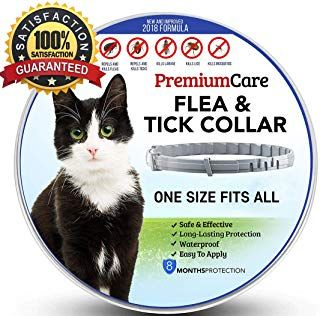 Amazon Com Cats Pet Supplies Collars Harnesses Leashes Apparel Beds Furniture Toys More Ticks Flea And Tick Fleas