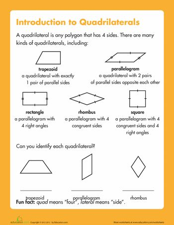 Naming Quadrilaterals | Geometry worksheets, Geometry and Worksheets
