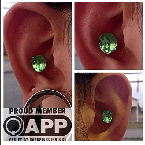 #regram from @brandonbaileypiercing of a pair of our Peridot Glass Faceted Plugs looking gorgeous in a pair of punched conch piercings! #tawapa #jewelry #accessories #earrings #plugs #fashion #style #piercing #piercings #tattoo #tattoos #stretchedears #stretchedlobes #dtla #losangeles #septum #bodyjewelry