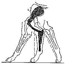 Oricom Technologies Leg Mechanics
