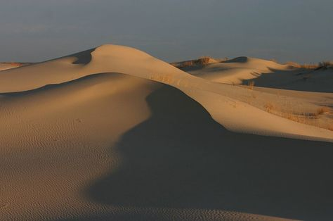 Surf or ride the sand dunes at Monahans Sandhills State Park just 45 minutes from Odessa and a little over an hour from Midland. Can you believe this place is in Texas?!