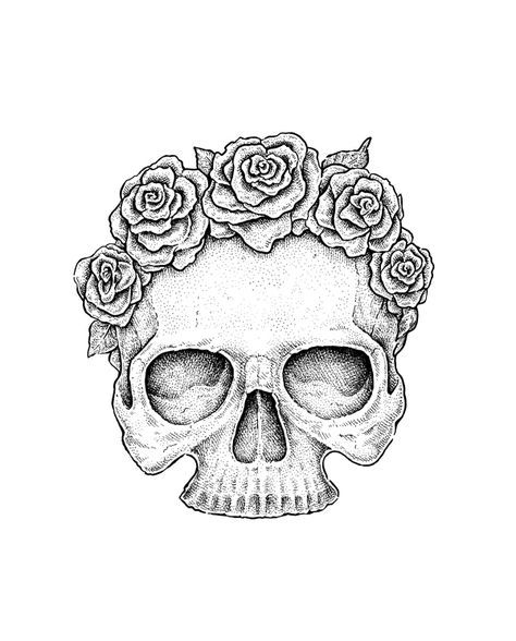 How To Draw A Skull In Profile Step By Step Themekeeper Com In 2020 Skulls Drawing Skull Sketch Scull Drawing