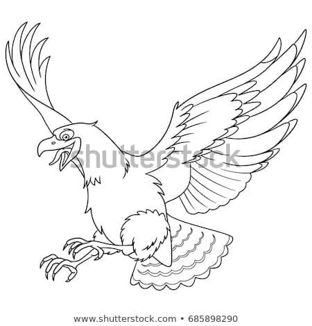 Coloring Page Of Cartoon Eagle Bird Hawk Condor Falcon