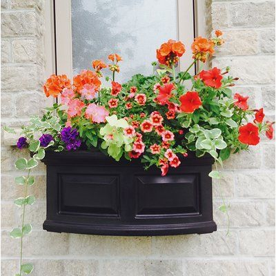 Mayne Inc Nantucket Self Watering Plastic Window Box Planter Color Black Size 10 H X 60 W X 11 5 D Flower Pots Window Box Window Planter Boxes