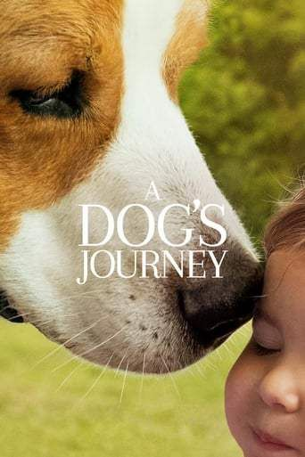 Mes Autres Vies De Chien 2019 Film Complet Streaming Vf En Francais Telecharger Film En Streaming A Dog S Journey Full Movies Online Free Free Movies Online