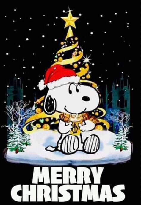 Merry Christmas Snoopy Christmas Peanuts Charlie Brown Snoopy Snoopy Pictures