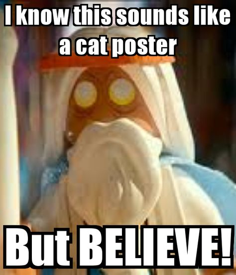 Image result for cat poster believe