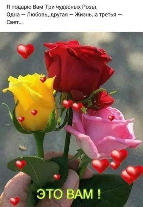 11) Одноклассники   Праздничные открытки, Романтические цветы, Абстрактные  цветы