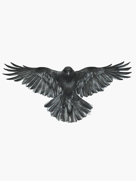 "'Crow in Flight' Sticker by Helen Lloyd ""Crow in Flight"" Sticker von helenlloydart Black Crow Tattoos, Tribal Bird Tattoos, Eagle Tattoos, Leg Tattoos, Body Art Tattoos, Tattoo Drawings, Sleeve Tattoos, Black Bird Tattoo, Eagle Chest Tattoo"