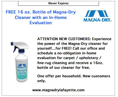 11 best magna dry services images on pinterest furniture cleaning check out our online coupon solutioingenieria Images