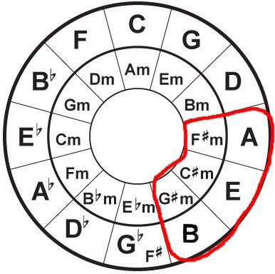 8 Useful Facts About The Circle Of Fifths Circle Of Fifths Guitar Chords For Songs Music Theory Guitar
