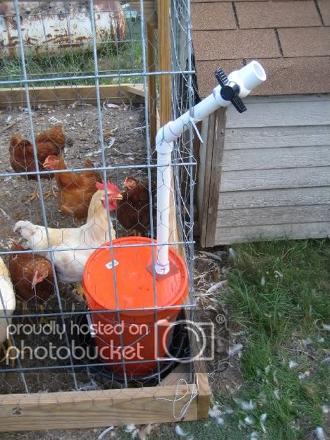 Easy To Build Chicken Watering Station Ideas Chicken Waterer Chicken Coop Designs Best Chicken Coop