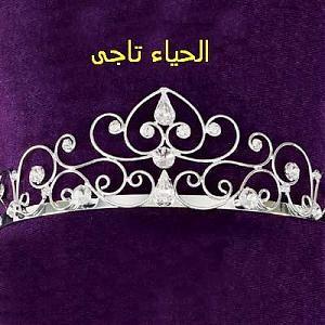 صور عن الحياء و الكسوف Eclipse Diy Tiara Crown Jewelry Tiara