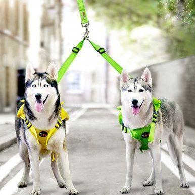 Two Ways Training Lead Leash Puppy Two Way Leash Pet Dog