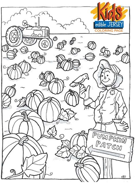 Edible Jersey Kids Coloring Page Pumpkin Patch Coloring