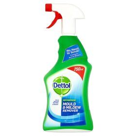 Dettol Spray Cleaner Anti Bacterial Mould Mildew Remover Mold And Mildew Remover Mildew Remover Mold And Mildew