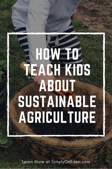 How To Teach Children About Sustainable Agriculture