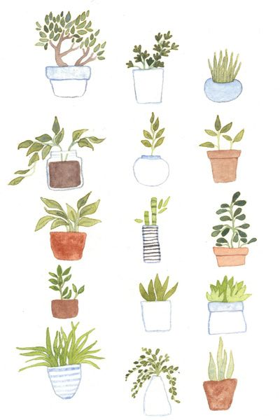 house plants drawing. potted plants art print by foxflowers society6 in pinterest plant and printing house drawing