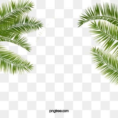 ورقة خلفية خلفية فنية ورقة خلفية إعلان Png وملف Psd للتحميل مجانا Watercolor Flower Background Leaf Background Flower Backgrounds