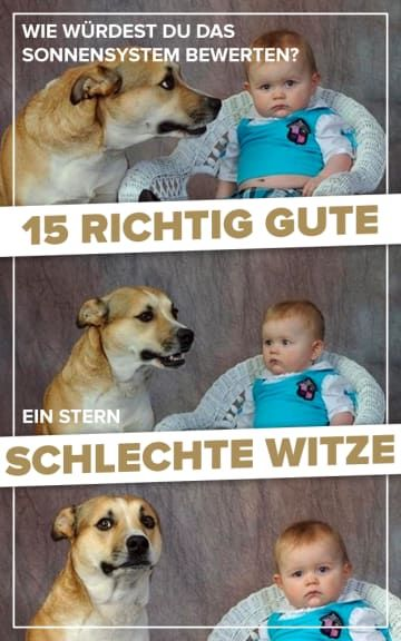 Dad Joke Dog Blank Meme Template Imgflip