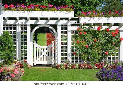 Royalty-Free Garden Trellis Stock Images, Photos & Vectors