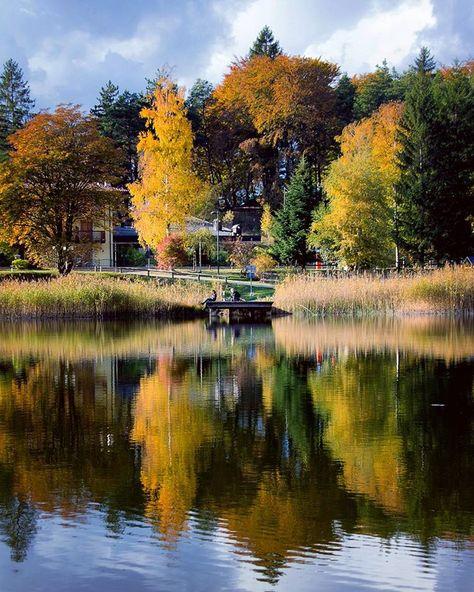 instaitalia 🍂🍃🍁Autumn's colors in lake...