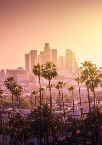 Downtown Los Angeles California California Wallpaper Los Angeles Skyline