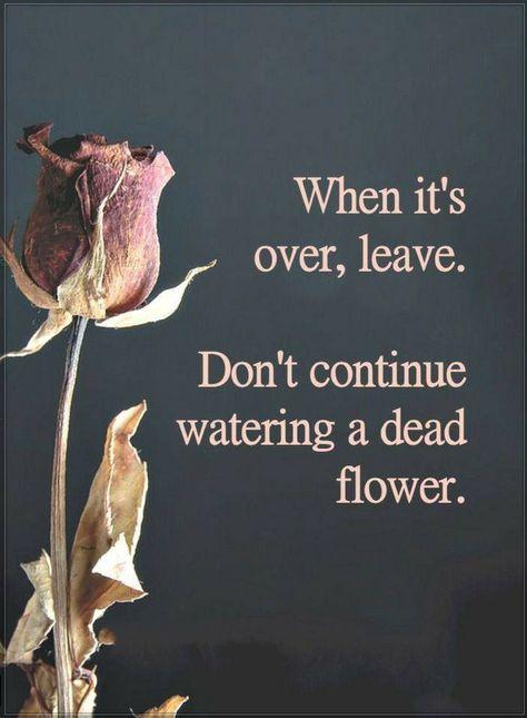 #breakup_quotes #love_quotes #Peace_Quote #Karma_Quote #Forgiveness_Quote #Happy_Quote #Sad_Quote #hart_Quote #Relationship_Quote #Karma_Quote #Life_Quote #Self_Love_Quote