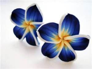 Hawaiian Blue Plumeria Flower Bing Images Tropical Flower Tattoos Hawaiian Flower Tattoos Flower Drawing