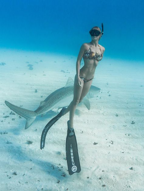 If some people are destined for a specific career, then Ocean Ramsey— yes, that's her real name—was meant to become a preeminent shark and marine researcher and