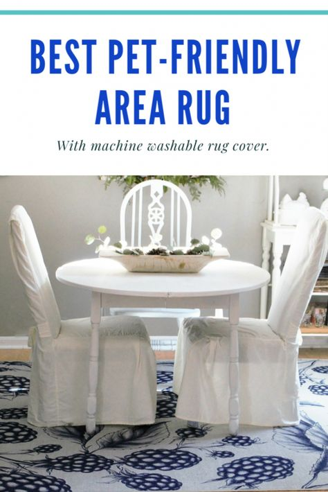 Washable Area Rug For A Pet Friendly