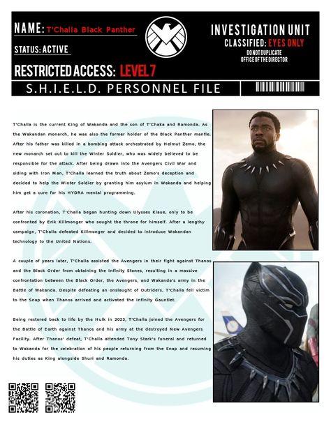 Shield File