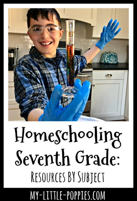 Homeschooling 7th Grade: Resources by Subject | My Little Poppies 7th Grade Science, 7th Grade Math, Science Curriculum, Homeschool Curriculum, Homeschooling, School Plan, Seventh Grade, Math Math, Math Fractions