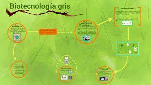 Biotecnologia Gris Dibujos Buscar Con Google Biotecnologia Gris