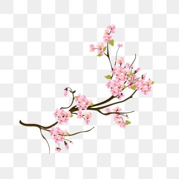 Hand Painted Realistic Wind Decorative Spring Peach Flower Decorative Squid Flowers Peach Blossom Png And Vector With Transparent Background For Free Downloa Watercolor Flower Illustration Flower Illustration Peach Flowers