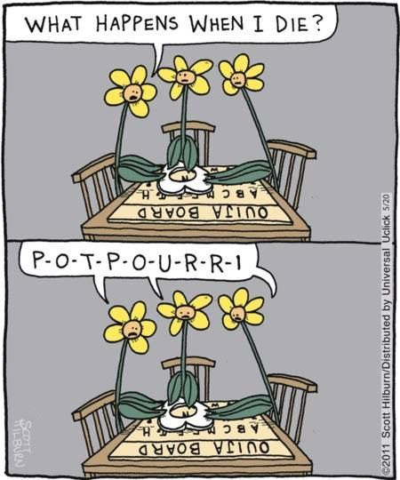 Comic Relief Wednesday Comicrelief Needalaugh Funnycomic Grief Afterlife Jewishphilly Philadelphia P Gardening Humor Plant Jokes Death Humor