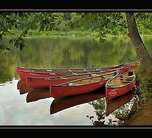 Canoes at Rest Clinton, NJ by Bridges