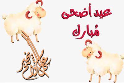 صور وخلفيات عيد الاضحى صور تهانى عيد الاضحى المبارك Eid Al Adha Eid Adha صور عيد الاضحى تحميل الصور عيد الا Place Card Holders Novelty Christmas Wallpaper